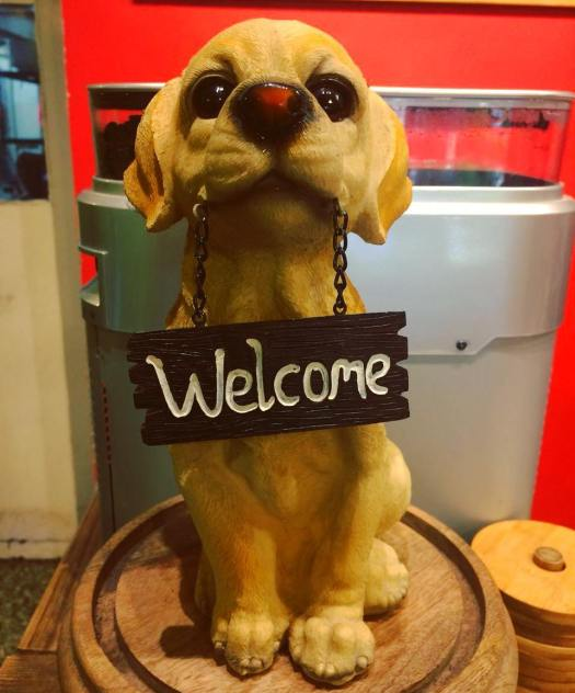 Dog friendly cafe in Pune – The Famished Reader